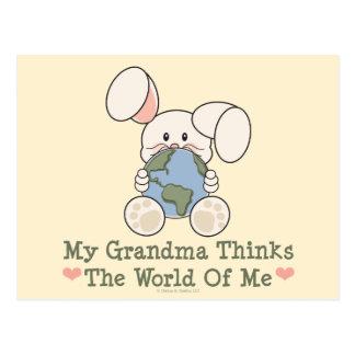 My Grandma Thinks The World Of Me Postcard