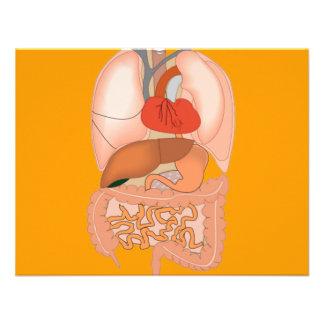 My Guts Digestive Organs Custom Invite