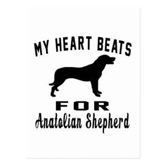 My Heart Beats For Anatolian Shepherd dog Postcard