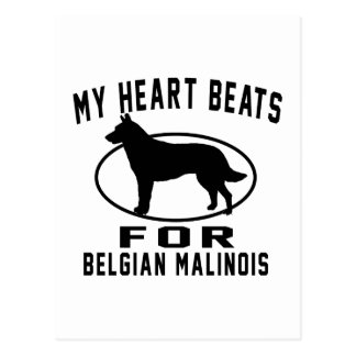 My Heart Beats For Belgian Malinois Postcard