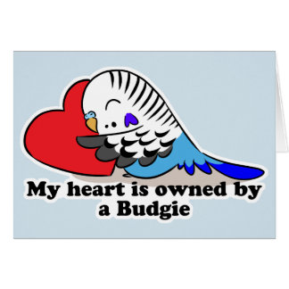 My heart belongs to a blue budgie card