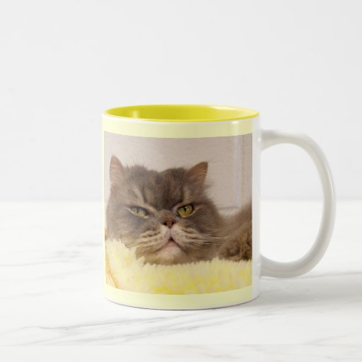 My Heart is sold on my SCOTTISH FOLD Mugs