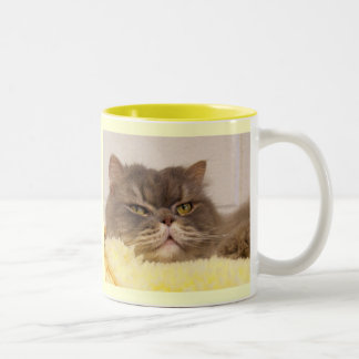 My Heart is sold on my SCOTTISH FOLD Two-Tone Mug