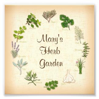 My Herb Garden Photo Print