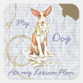My Ibizan Hound Ate My Lesson Plan Square Sticker