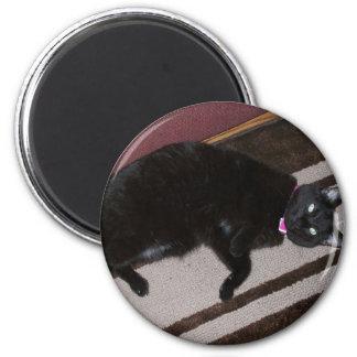 My kitty 6 cm round magnet