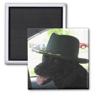 My Labrador Magnet