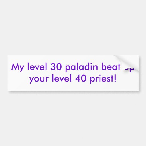 My level 30 paladin beat up your level 40 priest! bumper sticker