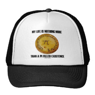 My Life Is Nothing More Than A Pi Filled Existence Mesh Hat
