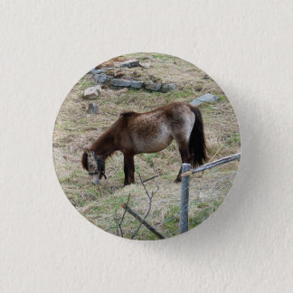 My Little Pony Button