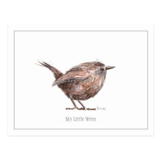 My Little Wren Postcard