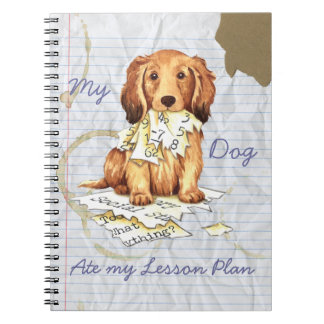 My Longhaired Dachshund Ate my Lesson Plan Note Book