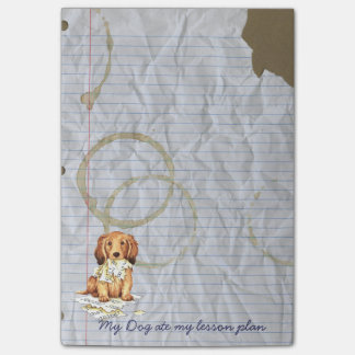 My Longhaired Dachshund Ate my Lesson Plan Post-it® Notes