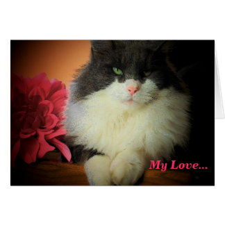 My Love...Kitty and Flower Greeting Card