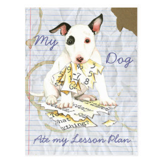 My Miniature Bull Terrier Ate my Lesson Plan Postcard
