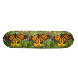 My Monarch Butterfly-skateboard Skate Boards