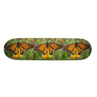 My Monarch Butterfly-skateboard