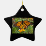 My Monarch Butterfly-star ornament