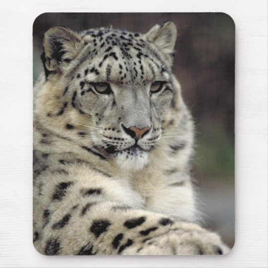 My Mouse... Mouse Mat