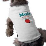 My Mule is All That! Funny Mule