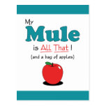 My Mule is All That! Funny Mule Post Card