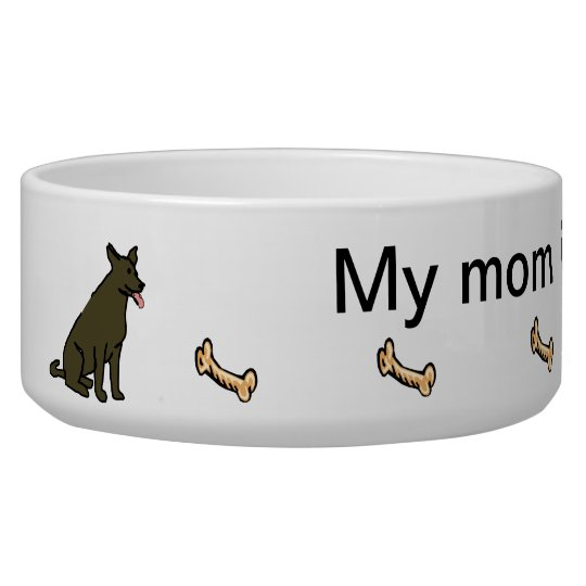 My mum is a veterinarian pet bowl