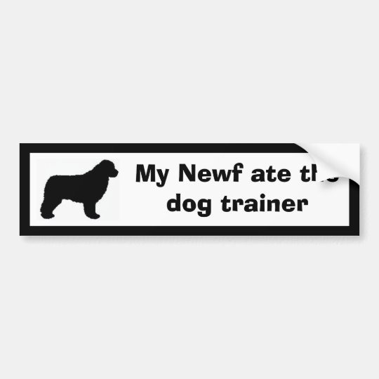 My Newf ate the dog trainer Bumper Sticker