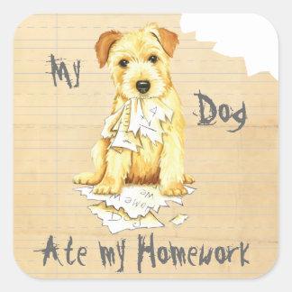 My Norfolk Terrier Ate My Homework Square Sticker