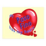 My Paso Fino Has My Heart Post Card