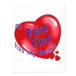 My Paso Fino Has My Heart Post Cards