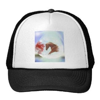 My perfect dream cap