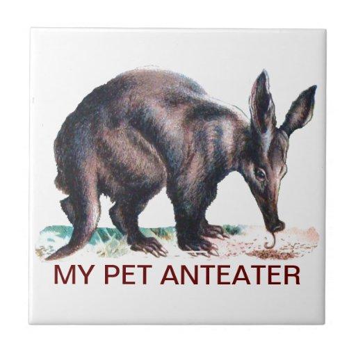 MY PET ANTEATER CERAMIC TILE