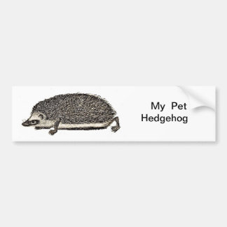 My Pet Hedgehog Bumper Sticker
