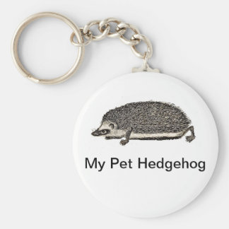 My Pet Hedgehog Key Ring