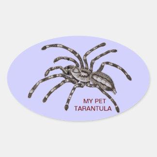 MY PET TARANTULA STICKER