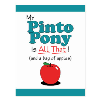 My Pinto Pony is All That! Funny Pony Postcard