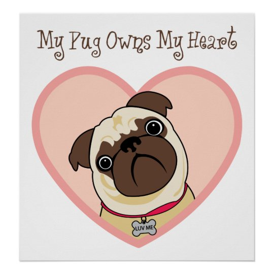 My Pug Owns My Heart Posters and Prints