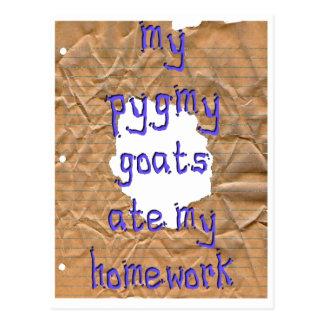 My Pygmy Goats Ate My Homework Postcard