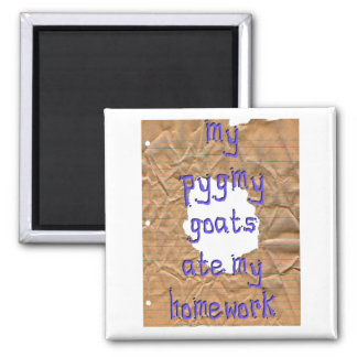My Pygmy Goats Ate My Homework Square Magnet
