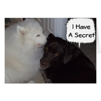 MY SECRET IS I LOVE YOU-EVERYBODY KNOWS GREETING CARD