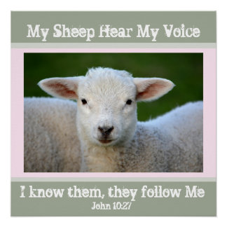 My Sheep Hear My Voice, Bible Verse John 10:27,