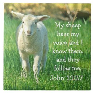 My Sheep Hear My Voice, Bible Verse John 10:27, Tile