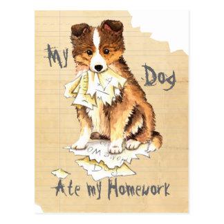 My Sheltie Ate My Homework Postcard