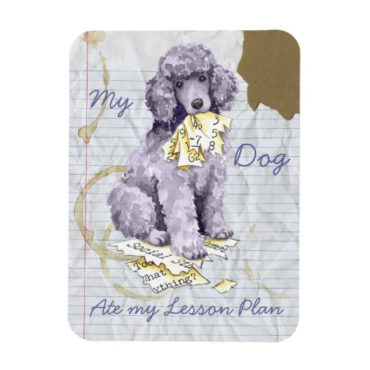 My Standard Poodle Ate my Lesson Plan Rectangular Photo Magnet