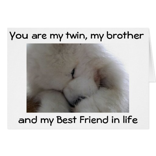 MY TWIN BROTHER /BEST FRIEND ON YOUR BIRTHDAY GREETING CARDS