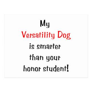 My Versatility Dog is Smarter Postcards