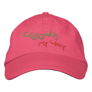 my way embroidered baseball cap