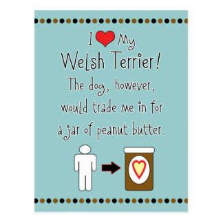 My Welsh Terrier Loves Peanut Butter Postcard