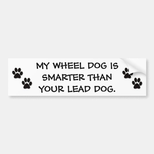 MY WHEEL DOG IS SMARTER THAN YOUR LEAD DOG BUMPER STICKER