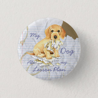 My Wirehaired Dachshund Ate my Lesson Plan 3 Cm Round Badge